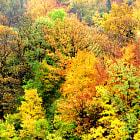 Autumn in Ollon