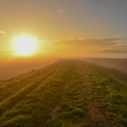 Foggy sunrise in Weerde