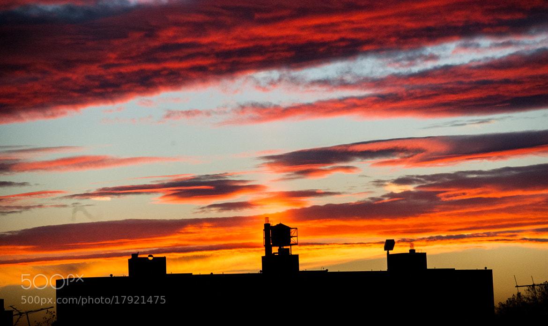 Photograph Brooklyn Sunset by Daniel Krieger on 500px