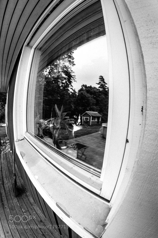 Photograph Reflection by Dan Pascu on 500px