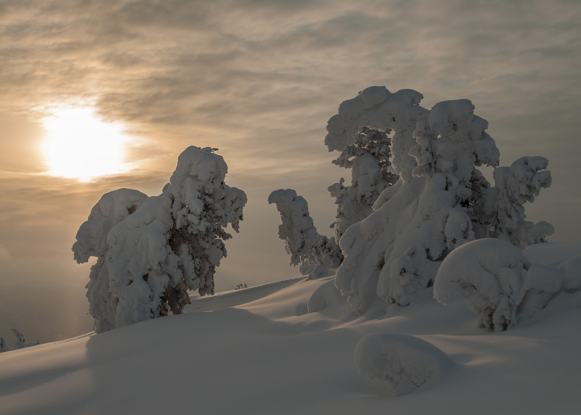 Photograph Snow can create many shapes by Odd Smedsrud on 500px