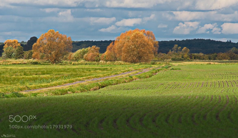 Photograph Autumn by Ulrich R. Sieber on 500px
