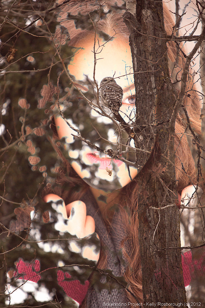Photograph Double Exposure Owl  by Kelly Rosborough on 500px