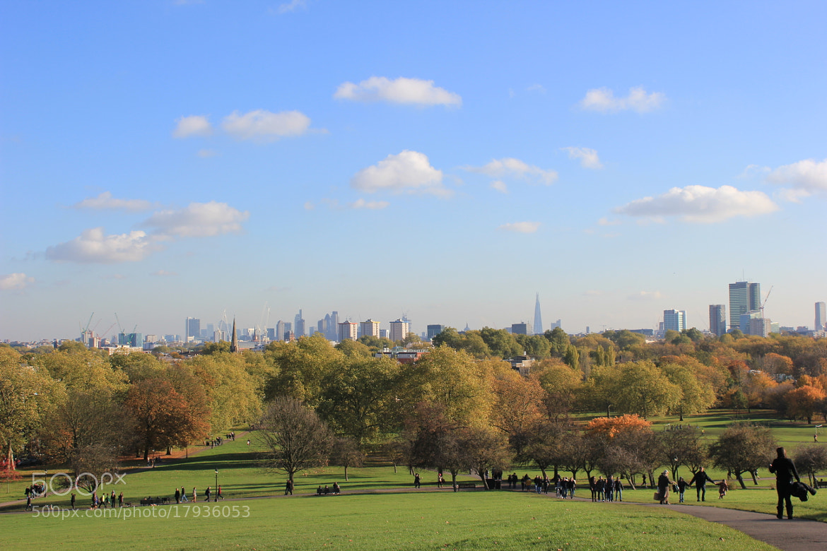 Photograph View of London from Primrose Hill by Thangaraj Mani on 500px