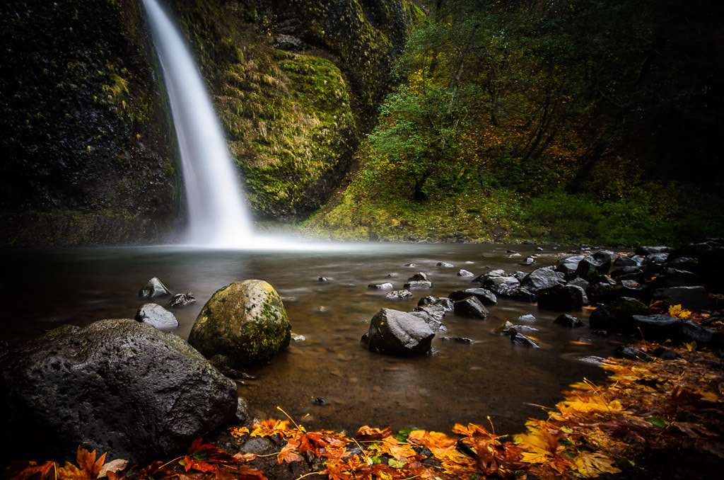 Photograph Horsetail Falls in the fall by Scott Wood on 500px