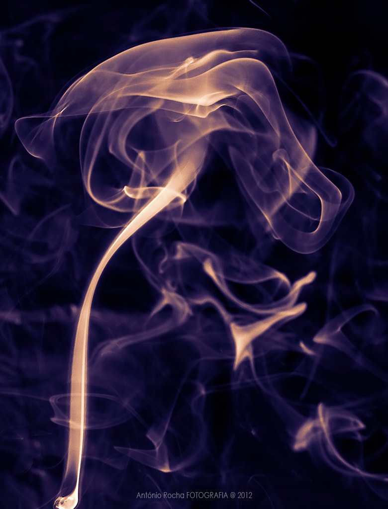 Photograph Smoke by António Rocha on 500px