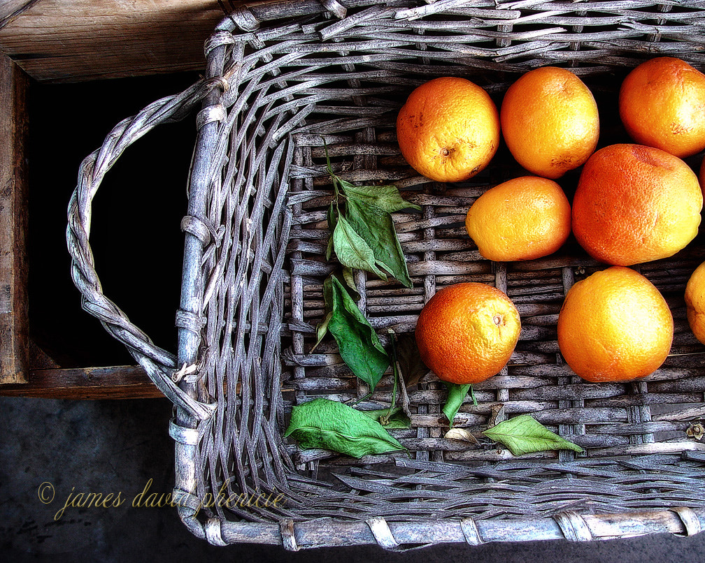 Photograph Old Oranges  by James David Phenicie on 500px