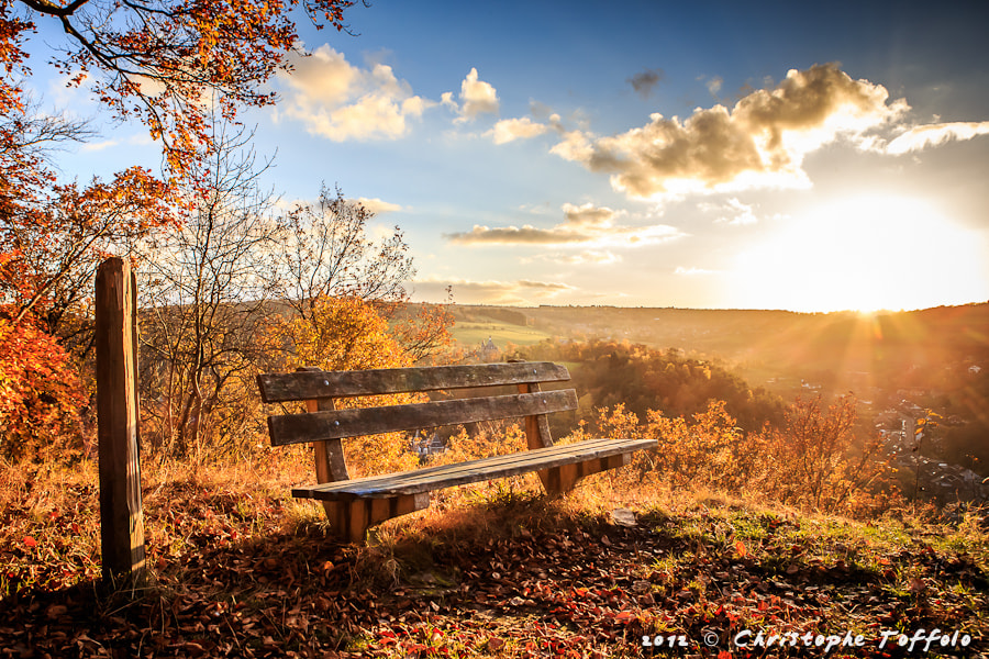 Photograph The autumn bench by Christophe Toffolo on 500px