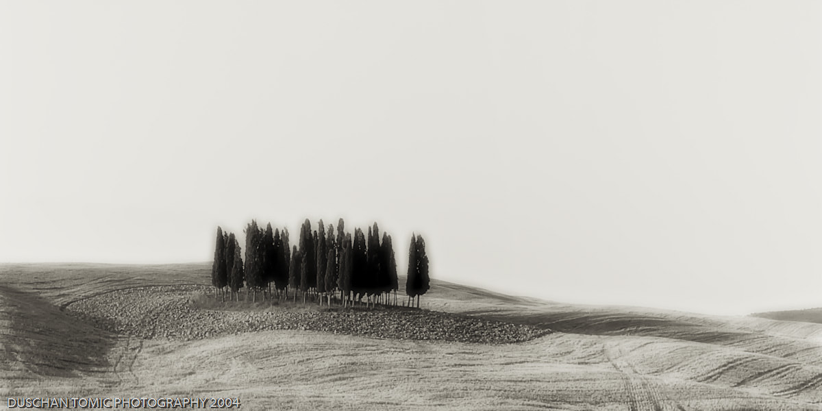 Photograph FAMOUS CYPRESSES by Duschan Tomic on 500px