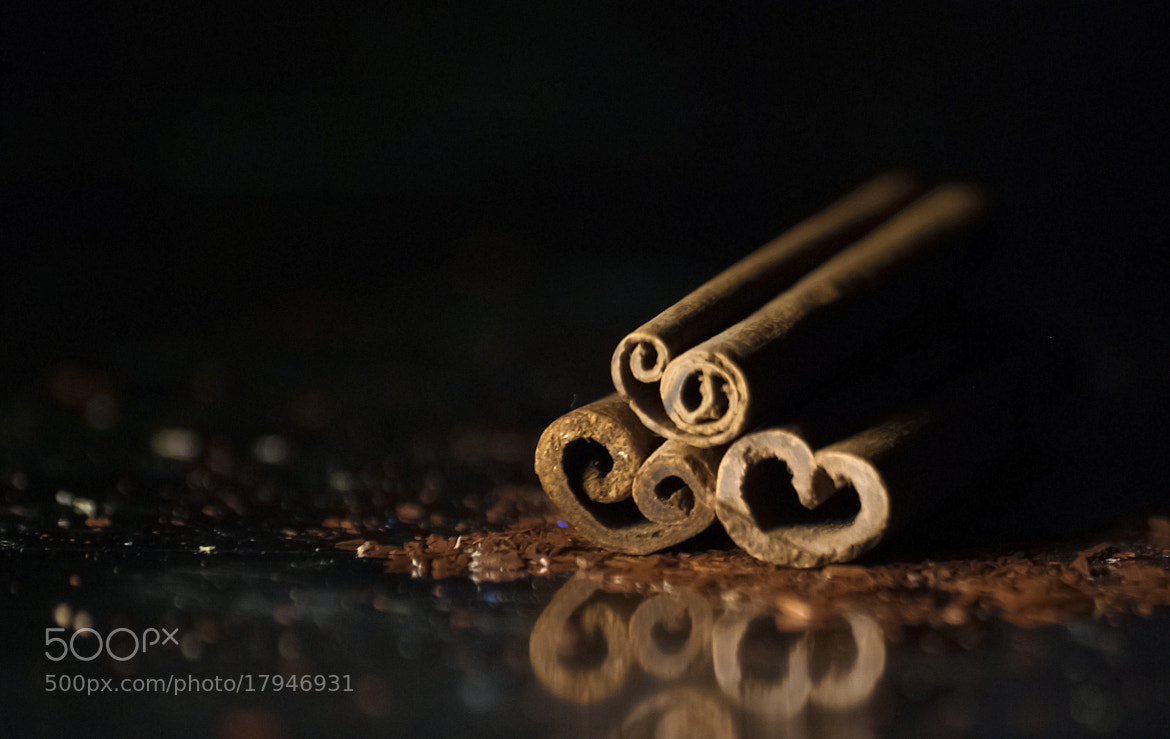 Photograph  Cinnamon #2 by Laura Ciunyte on 500px