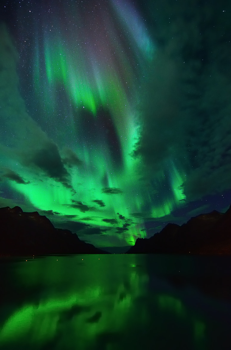 Photograph Northern Lights in Ersfjordbotn by John Hemmingsen on 500px