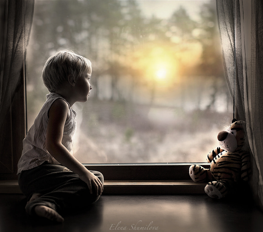 Photograph Meeting sunrise by Elena Shumilova on 500px
