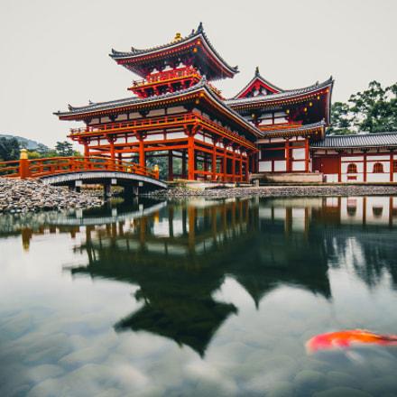 Byodoin, Uji, Kyōto