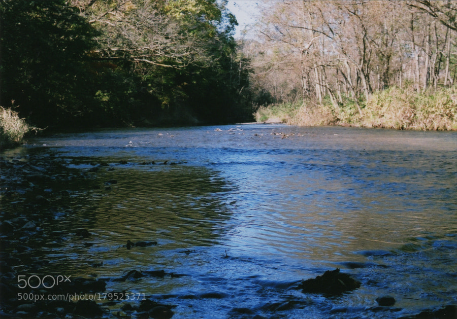 A river in early autumn.