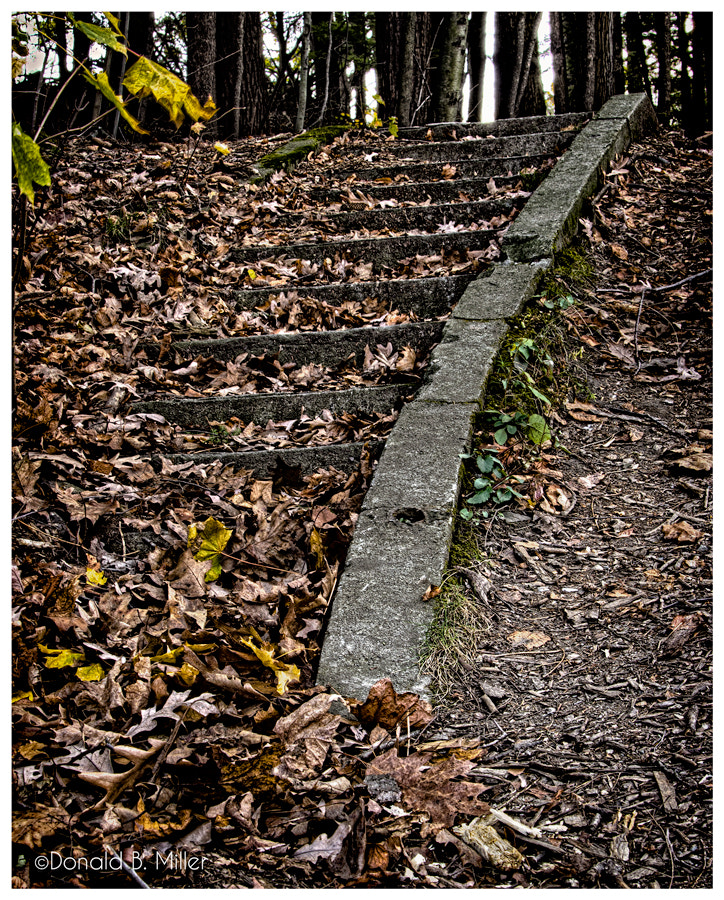 Photograph Stairs to... by Donald Miller on 500px