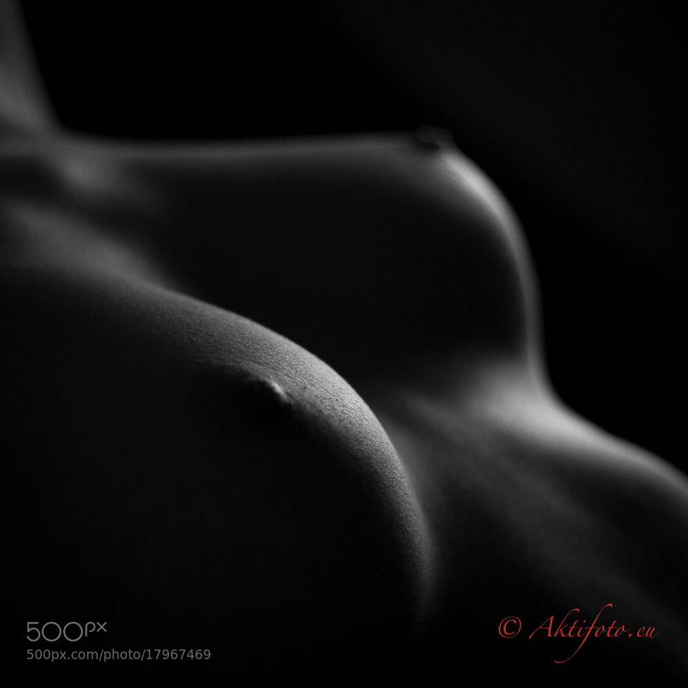 Photograph Shapes by Aktifoto  on 500px