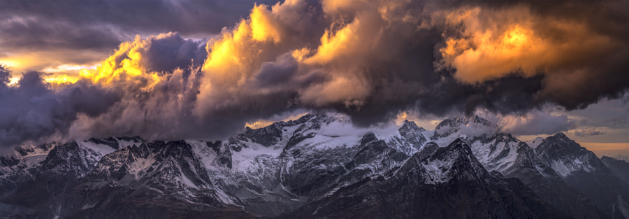 3100.jpg by Timothy Poulton on 500px.com
