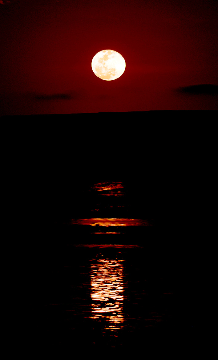 Photograph Staircase to the Moon, Broome, Western Australia by Gord McKenna on 500px