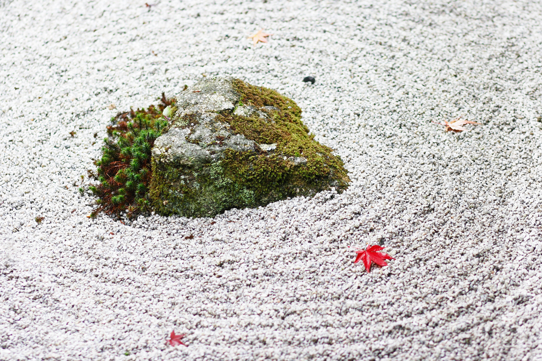 Photograph Japanese rock garden by Kyoto Sanada on 500px