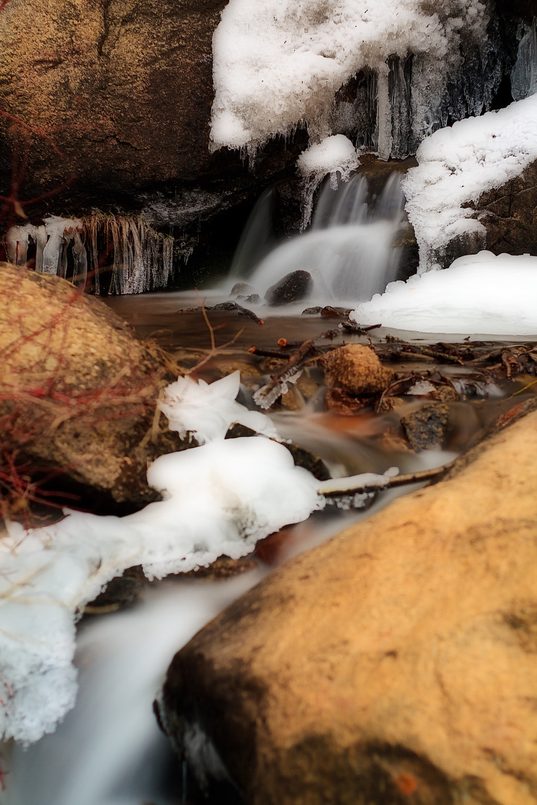 Photograph Cold Reality by Bill Stone on 500px