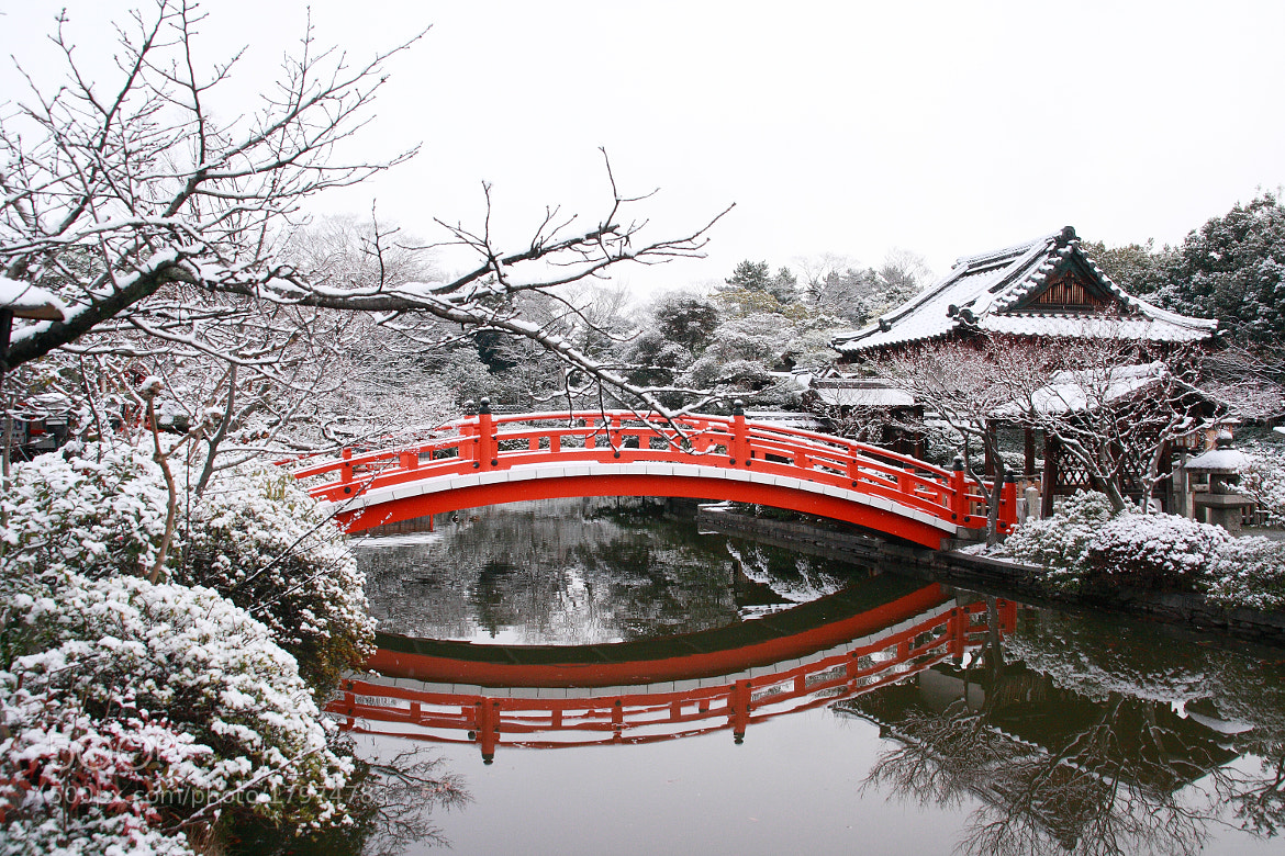 Photograph Kyoto Snow by Kyoto Sanada on 500px