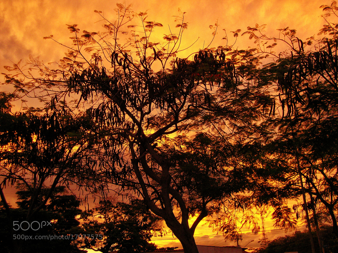 Photograph Sunset by  Soli Rocha on 500px