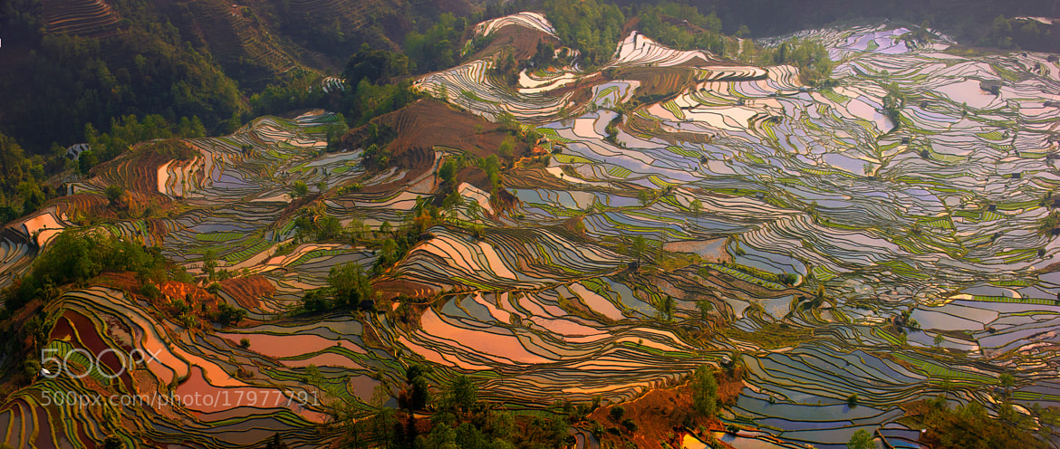 Photograph Tiger mouth - panorama by Hai Thinh on 500px