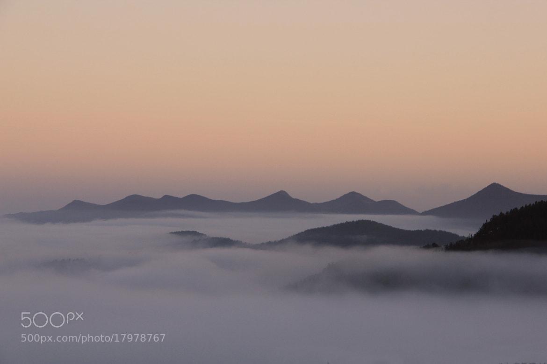 Photograph Misty morning by Aitor Arana on 500px