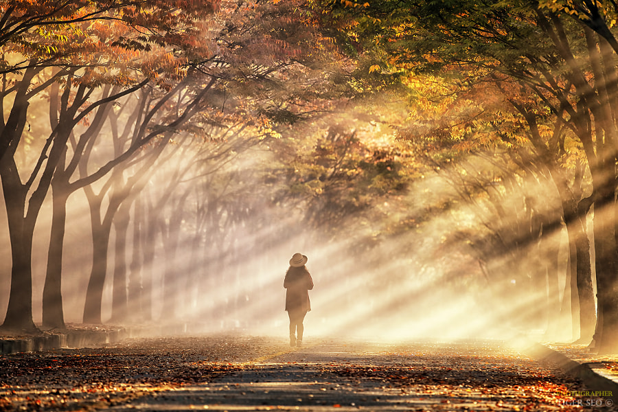 caught up in a fantasy by Tiger Seo