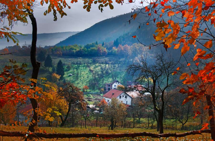 Countryside View by Mevludin Sejmenovic