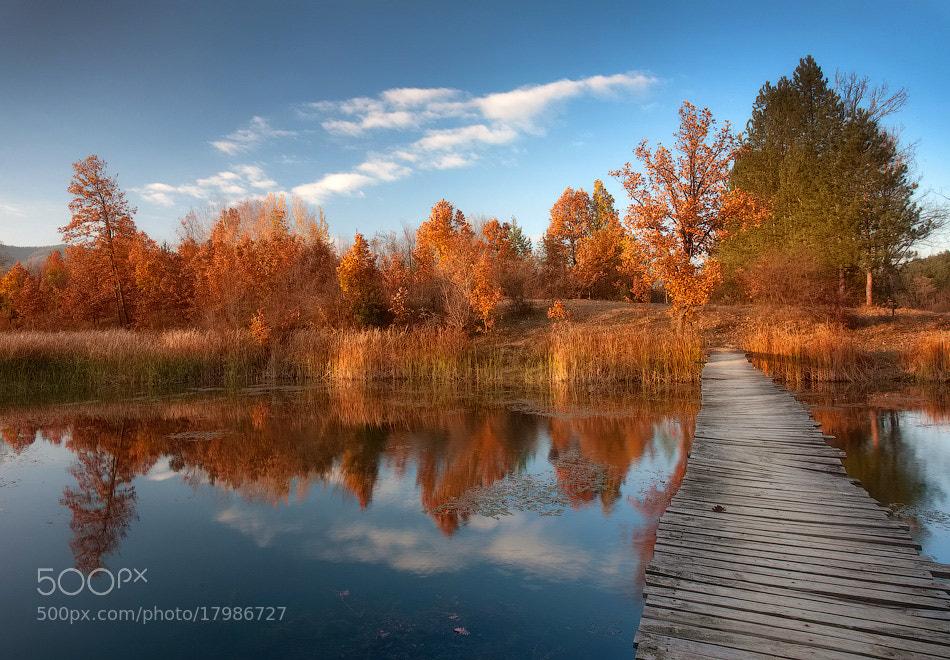 Photograph Fall by Nikolay Stoilov on 500px
