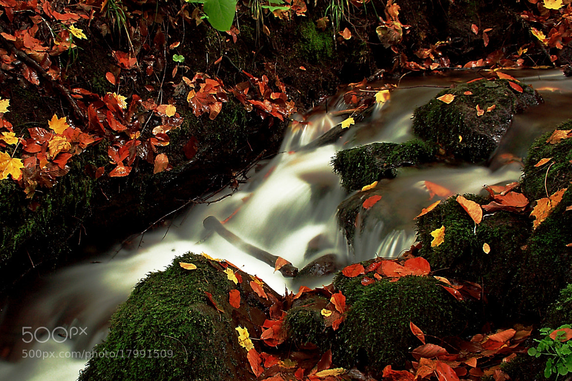 Photograph little fall by Turgut Özben on 500px