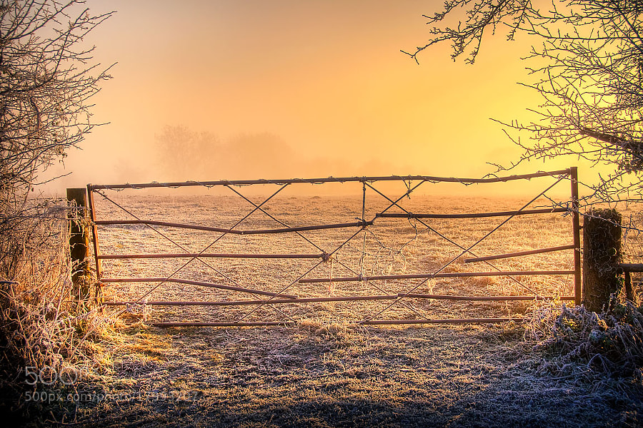 Photograph Frusty gate, Martock by Chris Spracklen on 500px