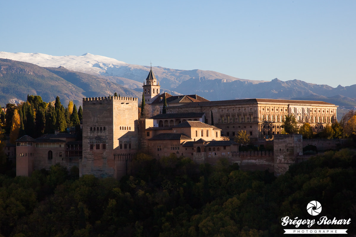 Photograph Alhambra by Grégory Rohart on 500px