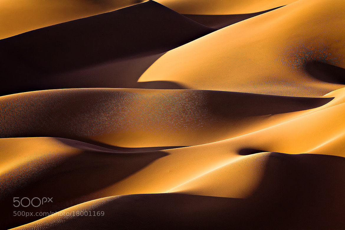 Photograph Light and shadow by Mohammadreza Momeni on 500px