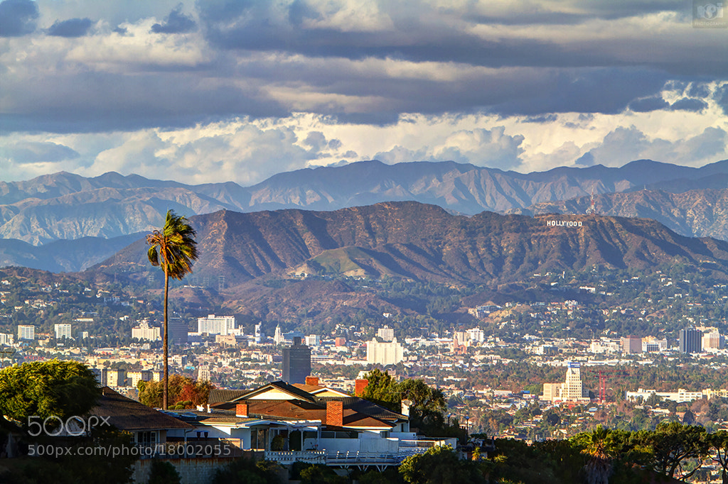 Photograph Hollywood Sign at clear day! by Nhut Pham on 500px