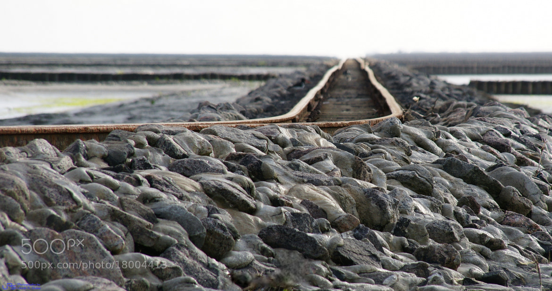Photograph Hallig island railway by Ulrich R. Sieber on 500px