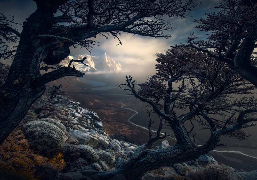 Persevere by Max Rive on 500px.com