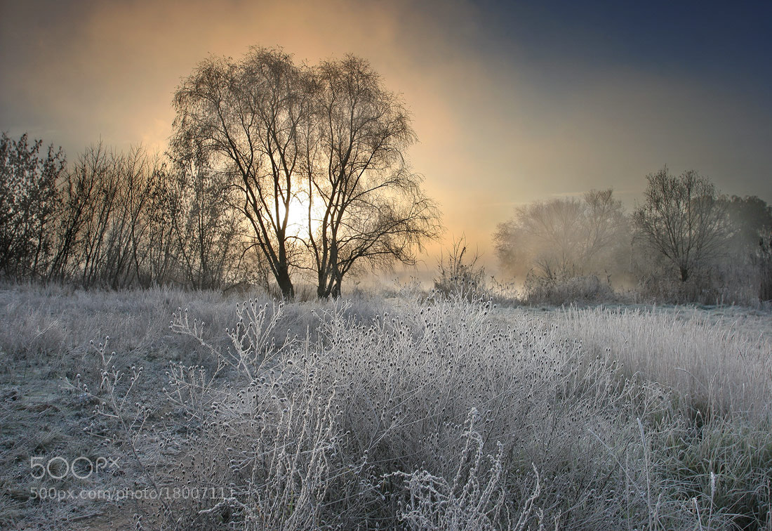 Photograph Frosty morning in November by Vadim Trunov on 500px