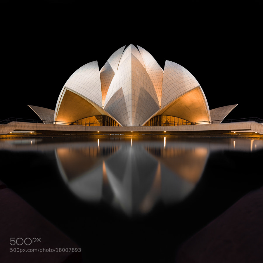 4 Black Lotus by Mathijs van den Bosch