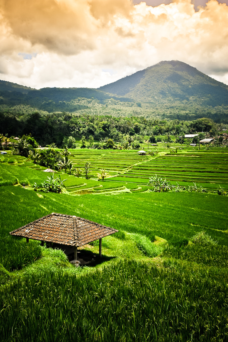 Photograph Landscape of BALI - BALI - INDONESIA by Julien REBOULET on 500px
