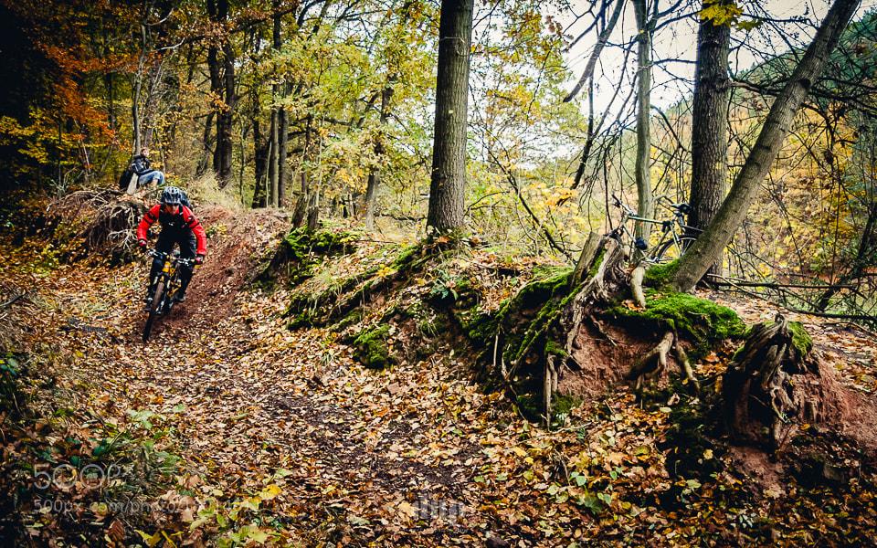 Photograph Autumn Ride by David Hera on 500px