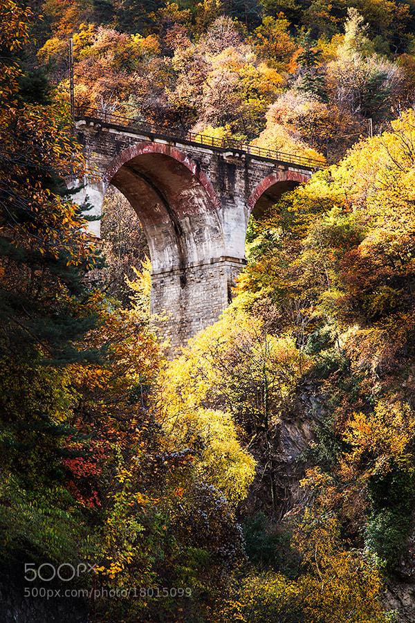 Photograph Italy – Valle di Susa by Fabrizio Fenoglio on 500px