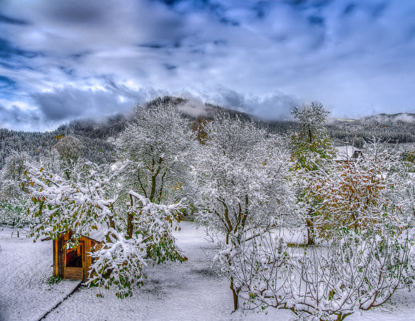 Photograph first snow this year by Paul Werner Suess on 500px