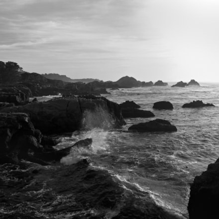 Point Lobos Carmel California, Canon POWERSHOT PRO1