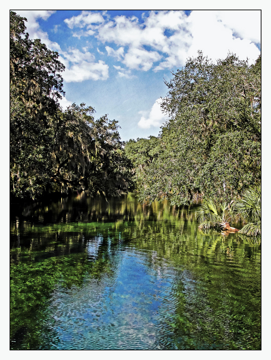 Photograph Blue Springs, Florida by Christine Morton on 500px
