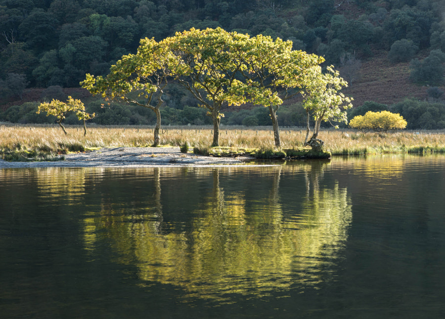 Reflections on Crummock Water