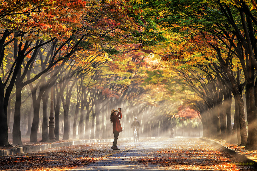 woman in rays de Tiger Seo sur 500px.com