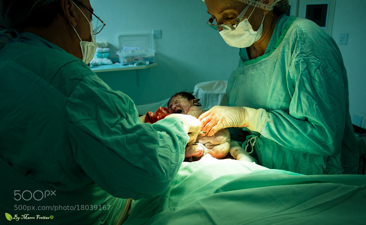 Photograph Miracle of Life by Marco Freitas on 500px