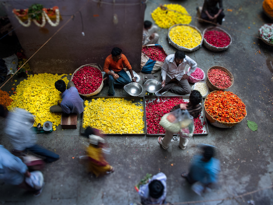 Photograph Flower Market by Steven Poe on 500px